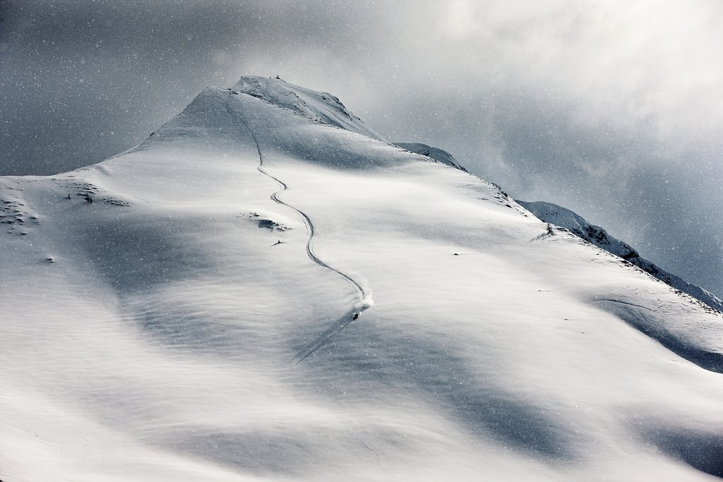 Freeride-Alpbachtal.jpg